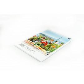 Blok notatnikowy A5/50k INTERDRUK kratka
